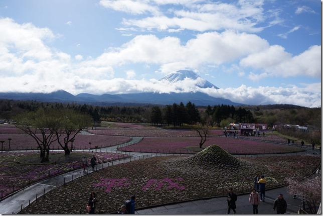 富士芝桜まつり平成と書かれていた画像